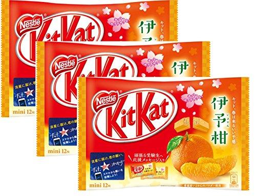 ネスレ日本 キットカットミニいよかん 3袋パック