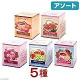 食品 アソート 生活の木 おいしいハーブティーセット A 5種5箱(10パック入り×5個)
