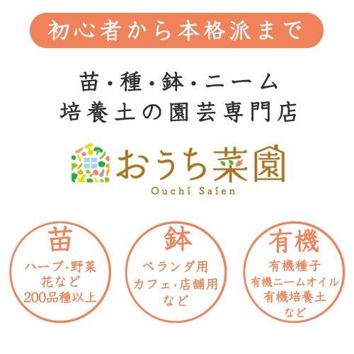 おうち菜園『ハーブ苗6種セット/ハーブティー用』