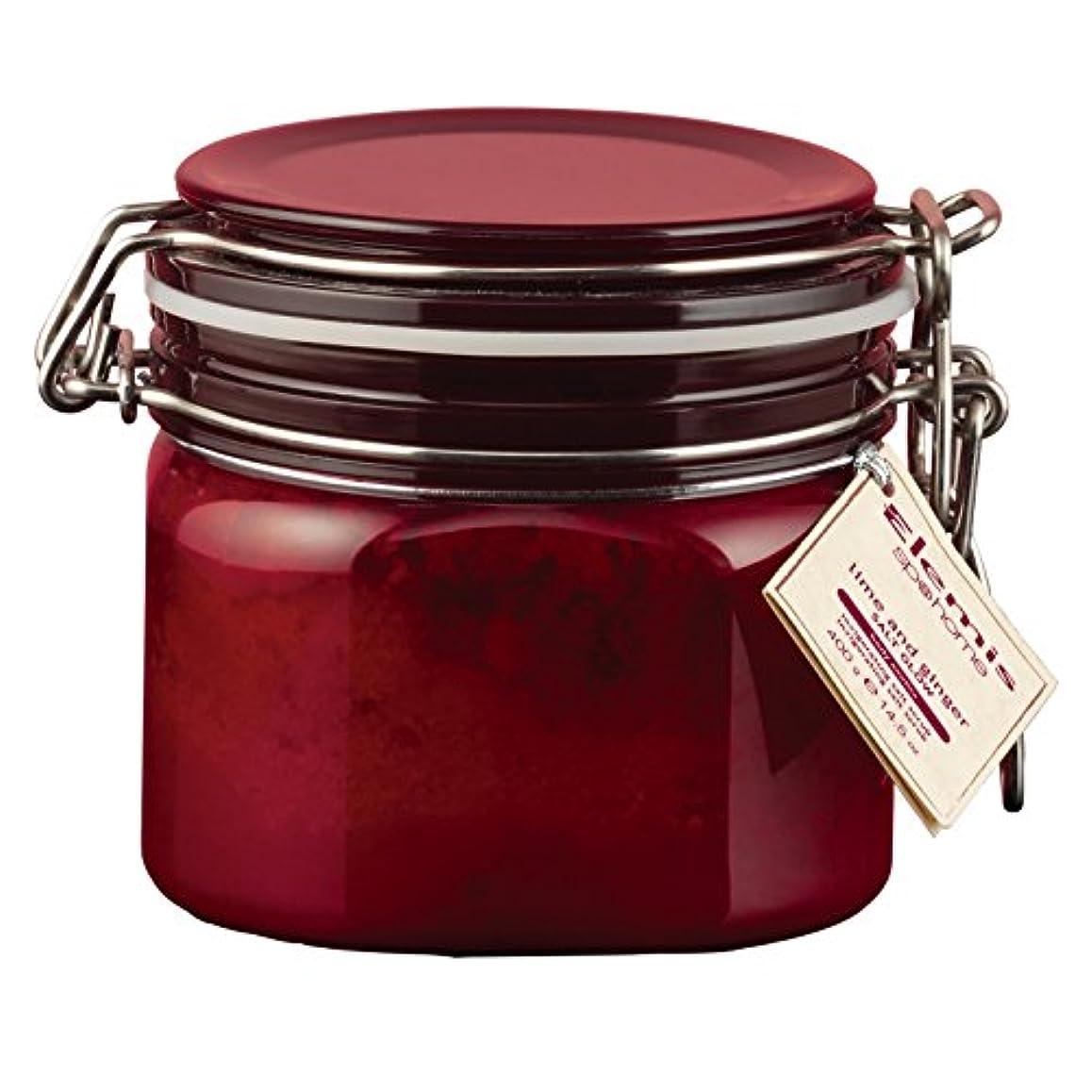 封筒ブルーベルバリアエレミスライムとジンジャーソルトグロー410グラム (Elemis) (x6) - Elemis Lime and Ginger Salt Glow 410g (Pack of 6) [並行輸入品]