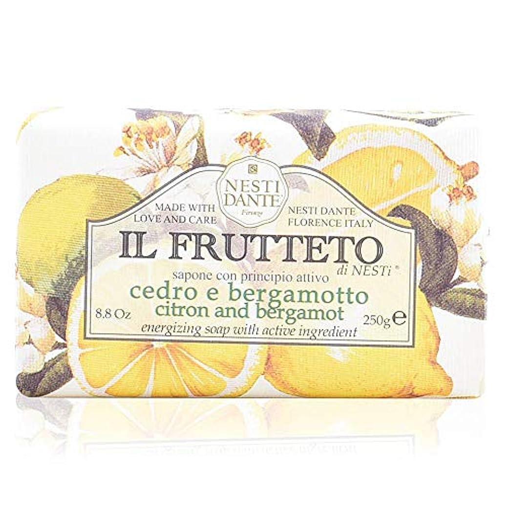 差し引くアナロジーさわやかネスティダンテ イル フルッテート ソープ レモン&ベルガモット 250g