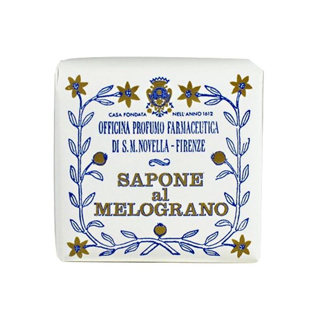 プレミア周囲世紀サンタマリアノヴェッラ ザクロソープトワレットサイズ 100g 【並行輸入品】