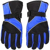 男性のスキー手袋,SODIAL(R) 男性のスキー手袋 サーマル防水 冬のアウトドアスポーツ スノーボードの為(青)