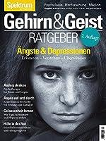 Aengste und Depressionen: Erkennen - Verstehen - Ueberwinden