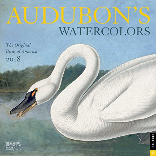 Audubon's Watercolors 2018 Wall Calendar
