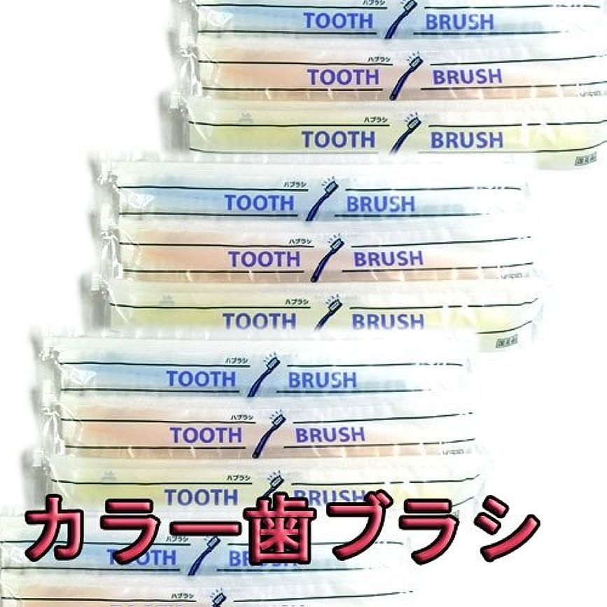 種をまくバンク予算使い捨て(インスタント) 粉付き歯ブラシ(10本組)(旅行用?お客様用に) 増量中 日本製