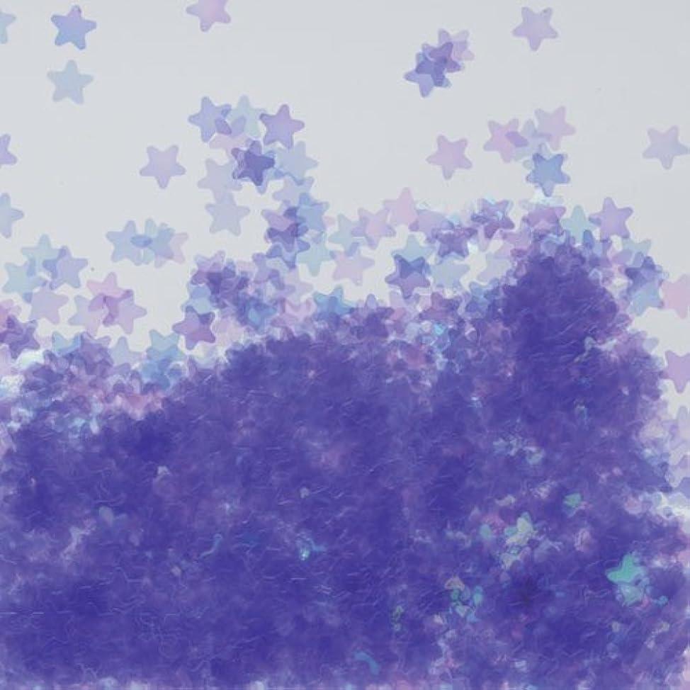 複数輝度連続したピカエース ネイル用パウダー 星オーロラ 耐溶剤 #766 パープル 0.5g