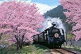 1000ピース ジグソーパズル 桜と大井川鐡道 めざせ! パズルの達人(50x75cm)