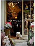 フランスで出会った犬たち 画像