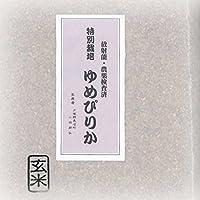 特別栽培 ゆめぴりか 玄米 5kg(天恵農場)