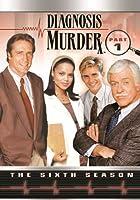 Diagnosis Murder: Sixth Season Part 1 [DVD]
