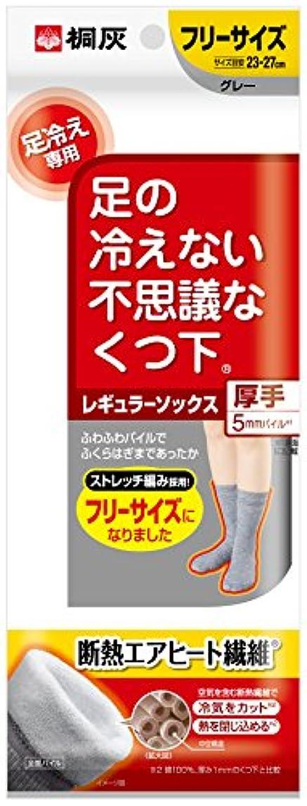 まろやかな香港有益な桐灰化学 足の冷えない不思議なくつ下 レギュラーソックス 厚手 足冷え専用 フリーサイズ グレー 1足分