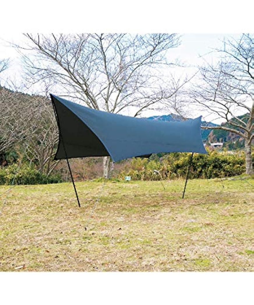 憤る休憩する休憩するビジョンピークス タープ Tarp ヘキサタープ クロウ VP160202I03 ブラック