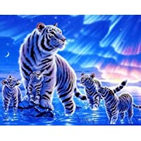 Frameless Picture Decoration Pictures Diy Painting By Numbers Oil Painting Modern Abstract Oil Painting White Tigers
