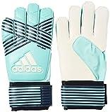 adidas(アディダス) サッカー ゴールキーパーグローブ ACE レプリカ エナジーアクアF17/エナジーブルー S17/レジェンドインクF17/トレースブルーF17(BS1492) DKN55 10