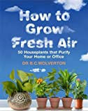 How to Grow Fresh Air: 50 Houseplants That Purify Your Home or Office