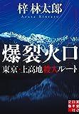 爆裂火口 東京・上高地殺人ルート (実業之日本社文庫) 画像
