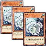 【 3枚セット 】遊戯王 日本語版 CP17-JP018 White Moray ホワイト・モーレイ (ノーマル)