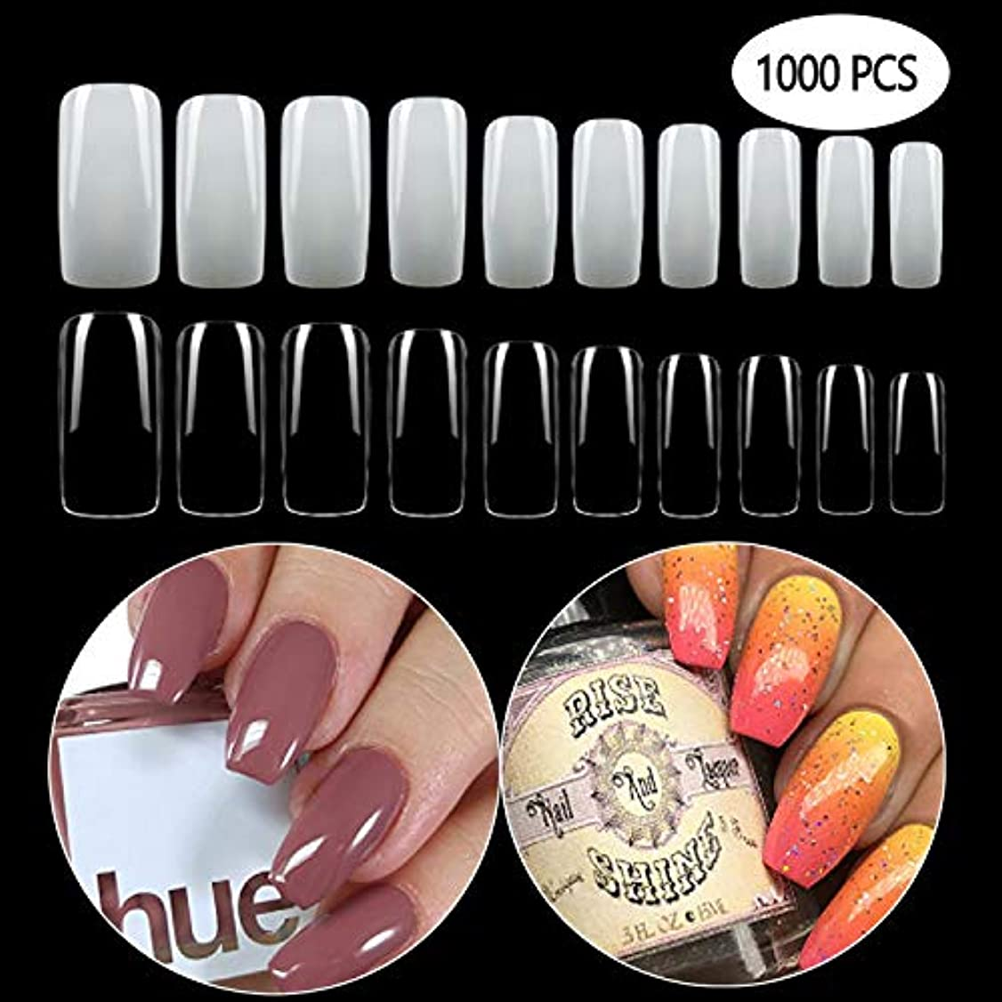 郊外意志拍手するGCOA 1000枚入れ ネイルチップ 偽爪 つけ爪 ネイル用品 10サイズ ショート デコレーション 無地 付け爪 練習用 爪にピッタリ 卵形 短い (500透明+500自然)