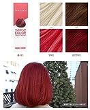 エープリル・スキン [韓国コスメ April Skin] カラートリートメント(ヘアダイ+トリートメント)Turn Up Hair Treatment (Hair Dye + Treatment) [海外直送品] (Red)