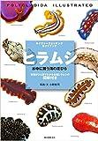 ヒラムシ 水中に舞う海の花びら: 特徴がひと目でわかる各種ヒラムシの図解付き (ネイチャーウォッチングガイドブック)