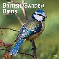 British Garden Birds 2020 Calendar