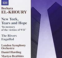 New York Tears & Hope: In Memory of the Victims of 9/11 by Daniel Harding (2006-09-26)