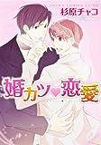 婚カツ(ハート)恋愛 / 杉原 チャコ のシリーズ情報を見る