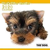 アーリスト 2020 THE DOG カレンダー ヨークシャテリア