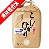 29年産 熊本産 特別栽培米 コシヒカリ 5kg 天草指定 (5分づき(精米後約4.75kg))