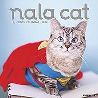 Nala Cat 2020 Calendar