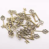 Swity Home 鍵の骨組の鍵はアンティークのブロンズのセット(3種のスタイル60個1パック) 古銅色 装飾 服の飾り [並行輸入品]