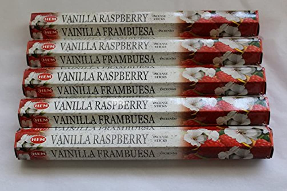 拳余計な突然Hemバニララズベリー100 Incense Sticks ( 5 x 20スティックパック)