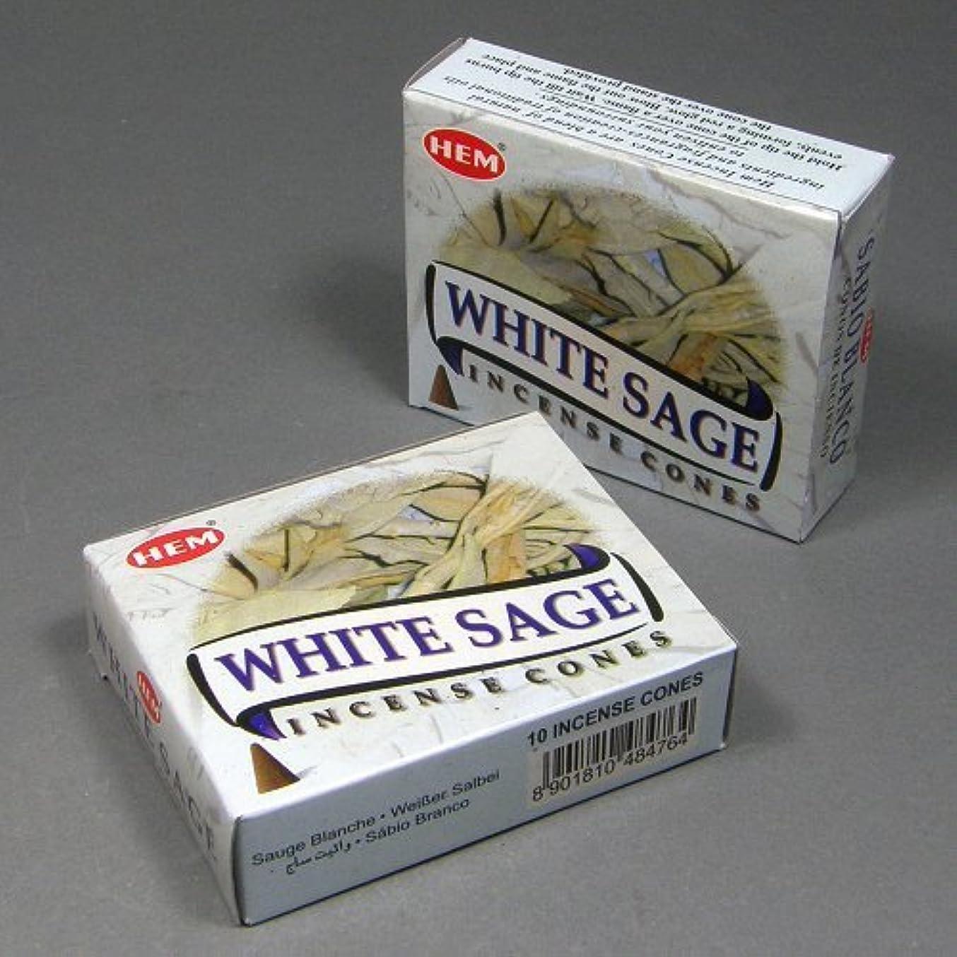 させるテープHemホワイトセージ香Dhoop Cones、10円錐のペアボックス
