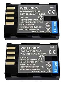 [WELLSKY] [ 2個セット ] Panasonic パナソニック DMW-BLF19 互換バッテリー [ 純正充電器で充電可能 残量表示可能 純正品と同じよう使用可能 ] LUMIX ルミックス DMC-GH3 / DMC-GH3A / DMC-GH3H / DMC-GH4 / DMC-GH4 / DC-GH5 / DC-GH5-K / DC-GH5M-K / DMW-BGGH3 / DMW-BGGH5