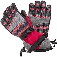 スキーグローブ 冬用 スノーボードグローブ 滑り止め付 防風 防撥水 防寒 透湿 タイプ スキー手袋 男女兼用 Peabownn