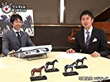 #60 フェブラリーステークス プレイバック & 武豊ファンミーティング
