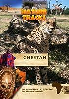 Nature Tracks Cheetah【DVD】 [並行輸入品]