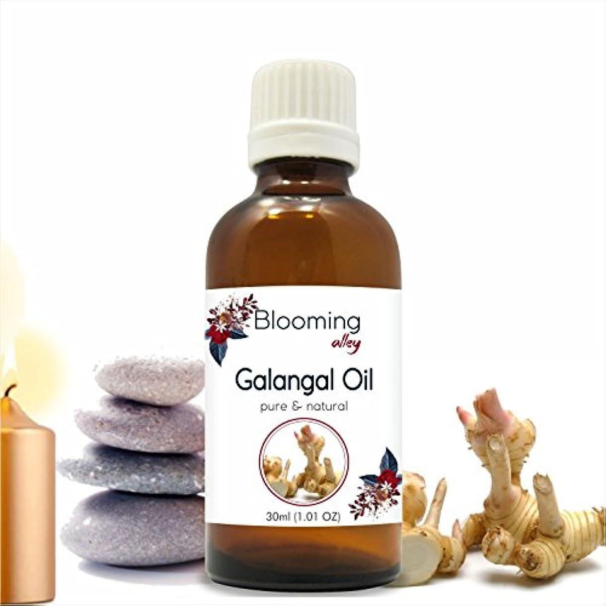 西トランジスタ以内にGalangal Oil(Alpina Officinarum) Essential Oil 30 ml or 1.0 Fl Oz by Blooming Alley