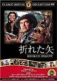 折れた矢 [DVD] FRT-252
