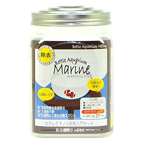 海水魚の飼育が可能な マリンボトルアクアリウム(カクレクマノミ飼育入門セット)