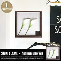 F-Style Frame Anthurium/White