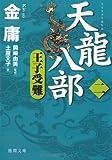 天龍八部〈2〉王子受難 (徳間文庫)