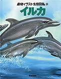 動物イラスト生態図鑑 9 イルカ