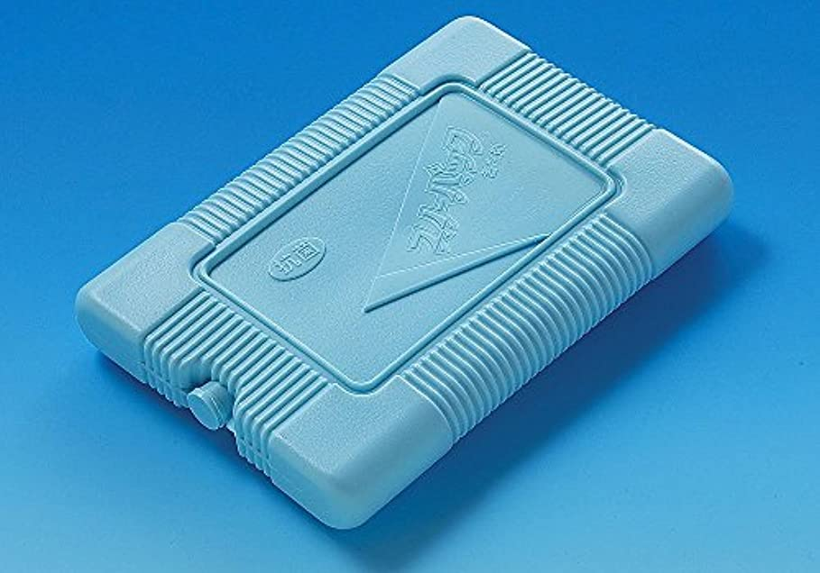 パイロット浸食エトナ山抗菌 スノーパック ブロー容器タイプ エムアール-100 1000g 20個入