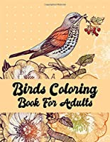 Birds coloring book for adults: A Bird Lovers Coloring Book with 50 Mindful Bird Designs (Bird Coloring Book)