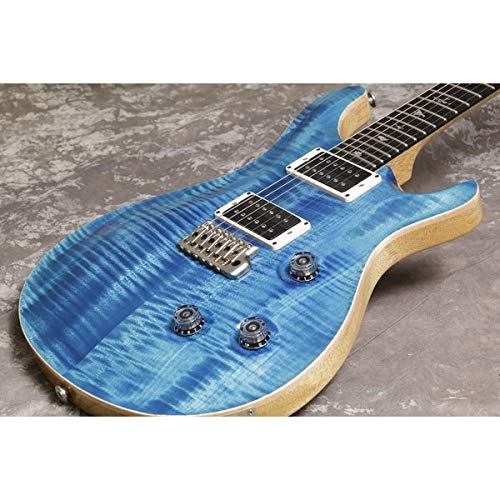 Paul Reed Smith/Wood Library Custom24 Blue Matteo