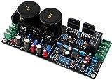 OPA2604 + LM3886 +ステレオ・オーディオ・アンプ・ボード、68W + 68W