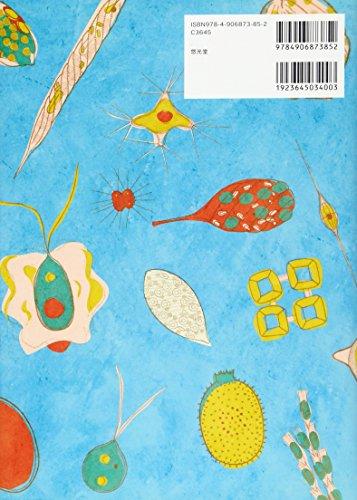 植物プランクトン―白幡沼の浮遊性藻類 種類と量の変化を調べる