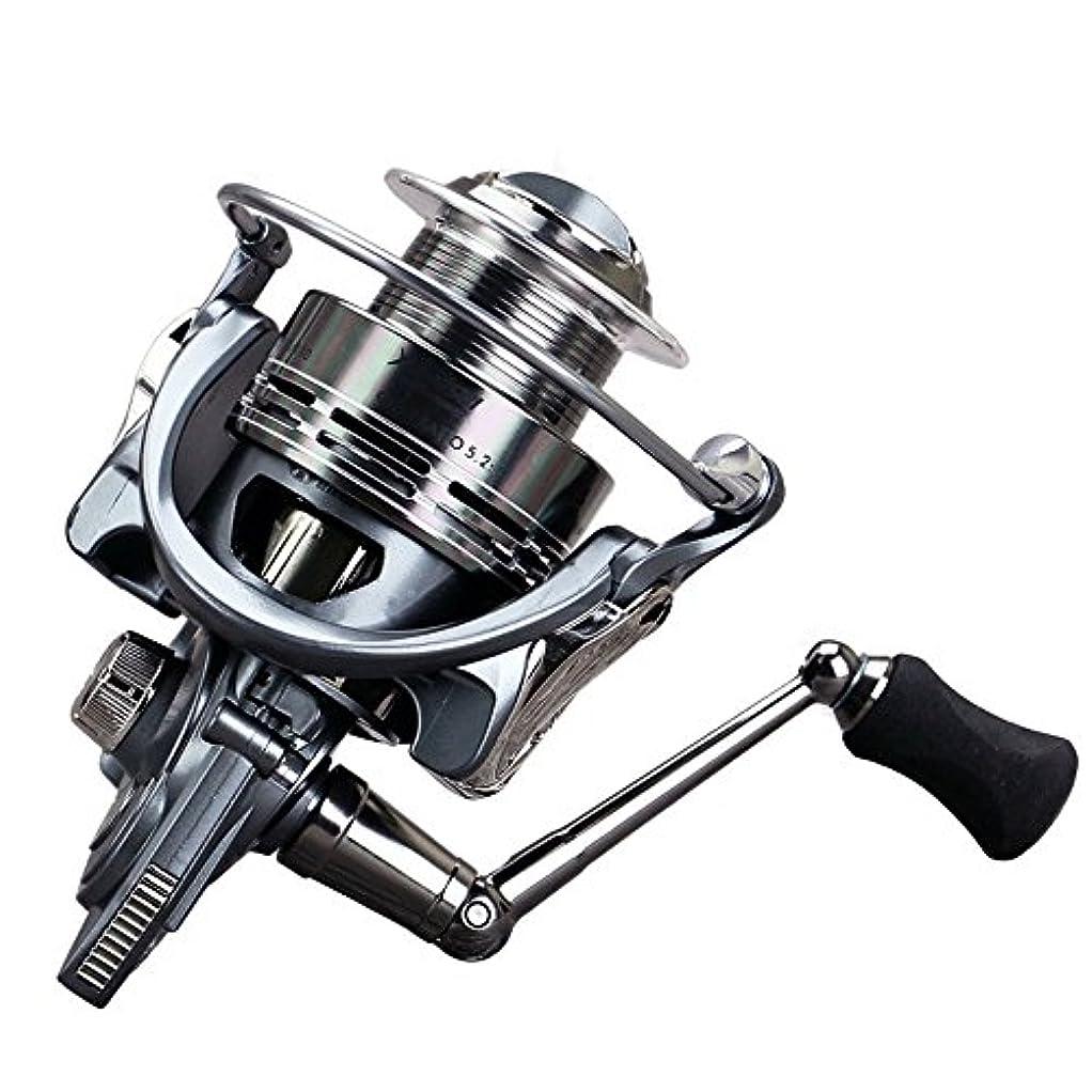 無許可満員かすかなスピニングリール スピニング釣りリール13 + 1ベアリング左右交換ハンドル釣りギア比5.5:1でダブルドラッグブレーキシステム 超スムーズパワフル (Size : 6000)